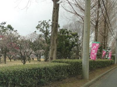 2012033101.jpg